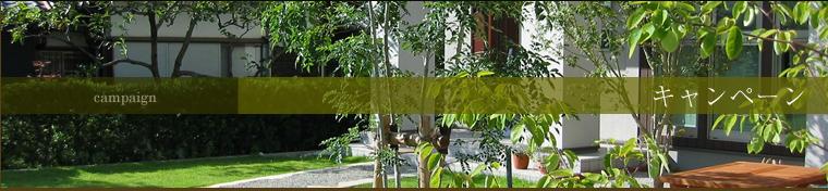 伝統的日本庭園から、ガーデニングの基礎作りまで ライフスタイルに合わせた庭園づくり。プレゼント企画