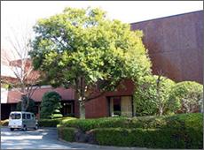 福岡市美術館樹木等管理業務委託